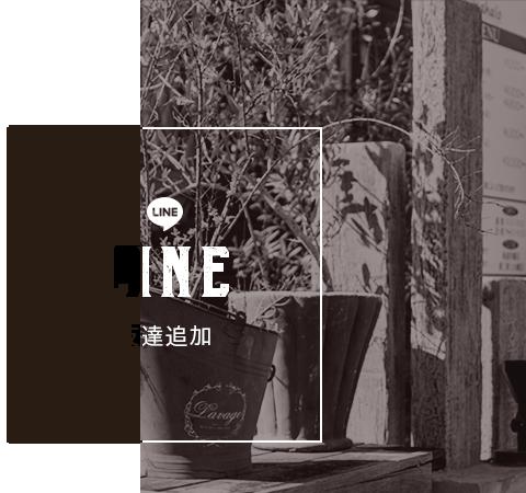line_half_banner